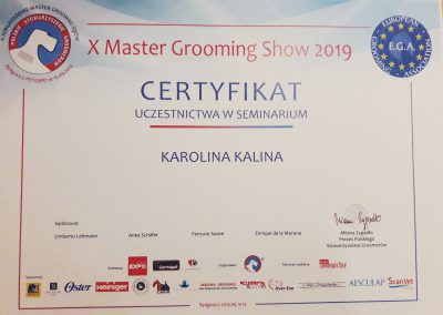 Master Grooming Show 2019